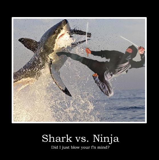 Shark vs Ninja
