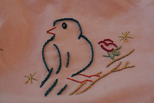 Bird on a Shirt - Result