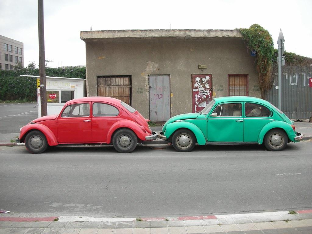 חיפושיות בשכונת מונטיפיורי
