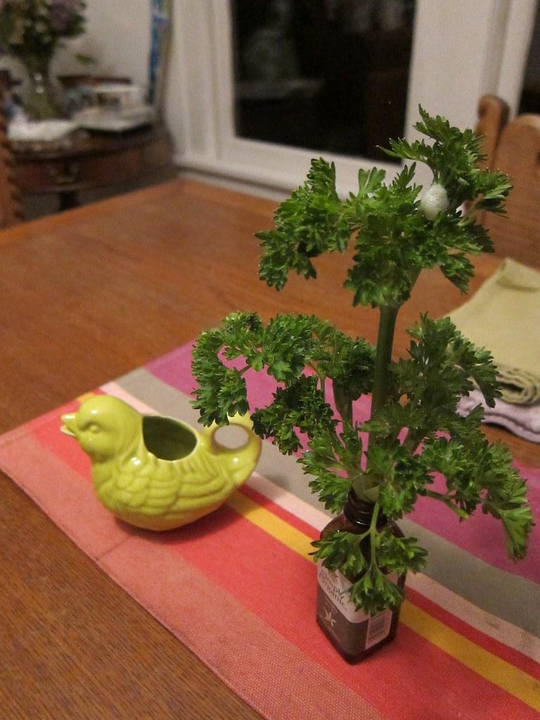"""Parsley """"bouquet"""""""