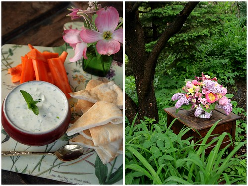 Organic Tzatziki Dip with carrots and pita