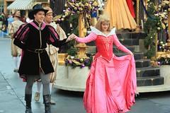 A Christmas Fantasy: Princess Aurora, Prince P...