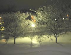 Freezing Rain on snow, 1.27.09 Winter storm