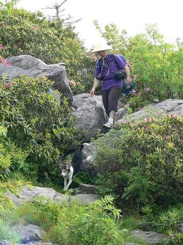 Mount Rogers Backpacking 2009 - Wilburn Ridge Trail - Henry Jumps, Ryan Walks