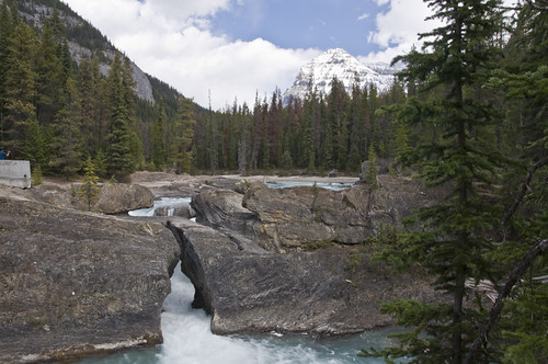 Natural Bridge formed over the years by the waters of the Kicking Horse River