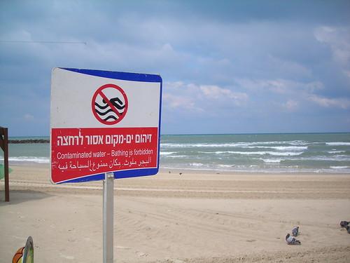 סיור חופים 3.3.09 תל אביב 010