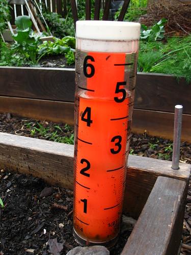 Nearly full rain gauge