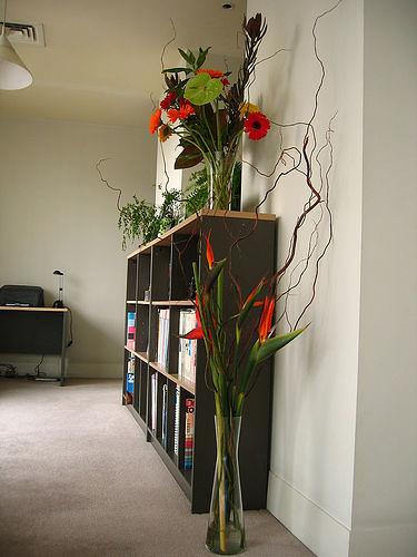 Amenajari interioare  18 Plante  Flori Apartament