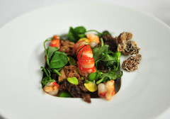 Supplement: Fresh Morel Mushroom and Fava Bean Salad