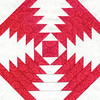class sample red and white - pinapple quilt block