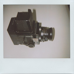 RB-roid seen by Polaroid 1200si