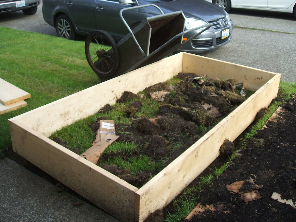 Parking strip raised bed with busted sod