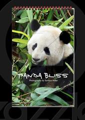 PANDA BLISS CALENDAR by Sandra Miller