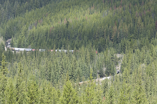 A Canadian Pacific Railway Train crossing the Spiral Tunnels