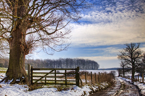 Bridleway in Snow Revisited