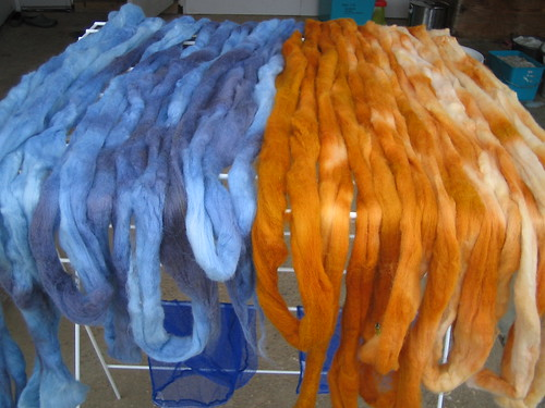 kettle dyed roving