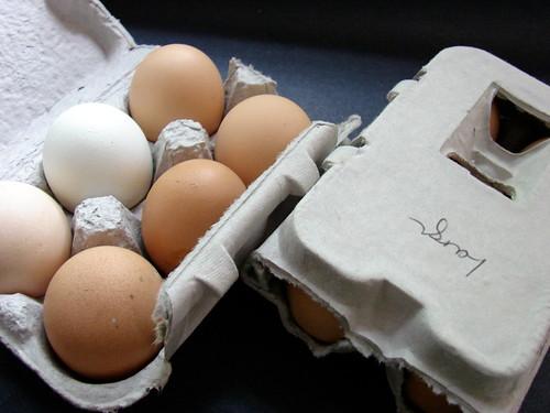 Pat's Pastured eggs