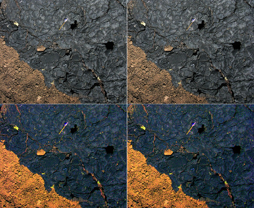 Lava Stereo Pair - True and False Color