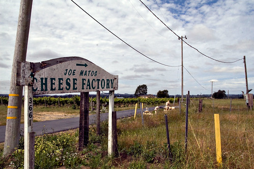 Portuguese Cheese Farm
