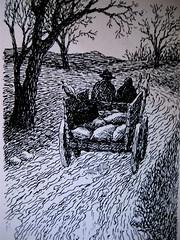 Virginia Woolf, La vedova e il pappagallo, Emme Edizioni 1984. Illustrazioni di Franco Matticchio. pag. 50 (part.)