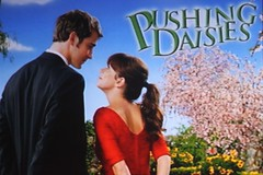 Day 177: Pushing Daisies