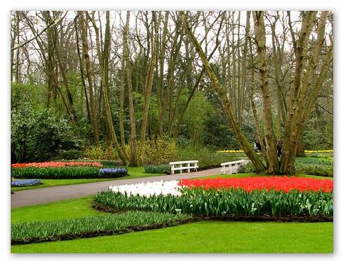 Keukenhof Garden by you.