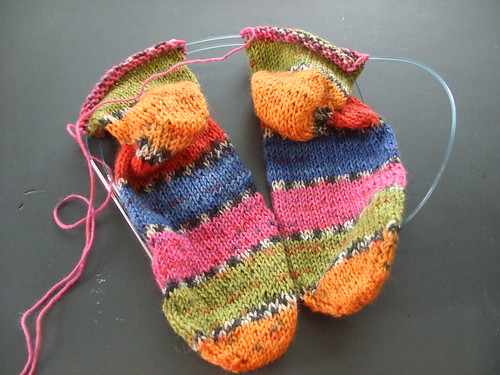 Socks progress