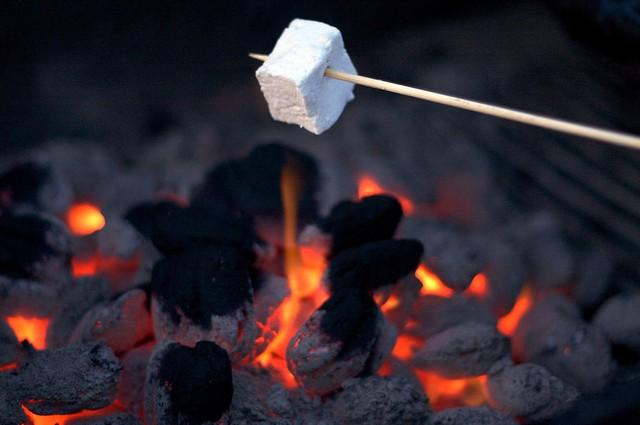 marshmallow, toasting