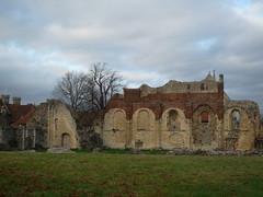 Canterbury (241)