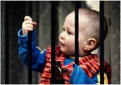 Kuzeytac: Hapis Çocukları