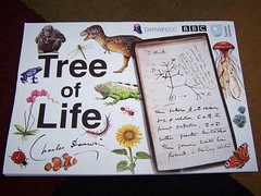Tree of Life poster from The Open University