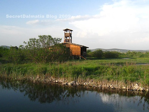 Birdwatching station and observatory