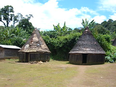 Dwellings in Cameroon