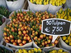 Tulips at Amsterdam flower market