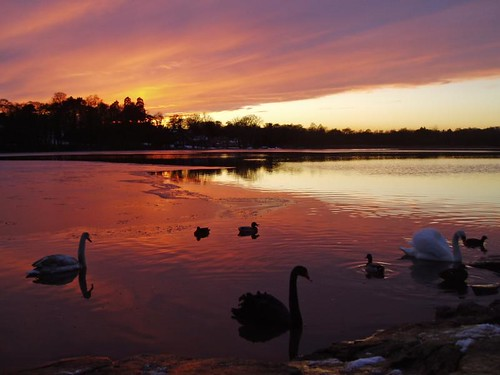 groby pool sunset