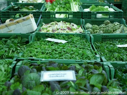 Mein Biogärtner 0_2009 02 13_8457