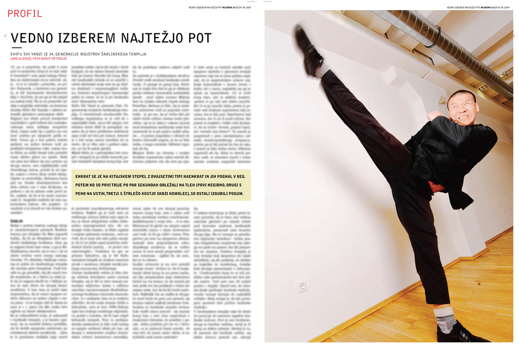 Shifu Shi Yanzi in the article of Mladina 16-2009