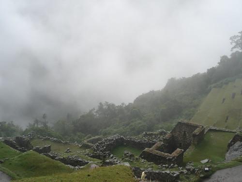 Machu Picchu- Terraces