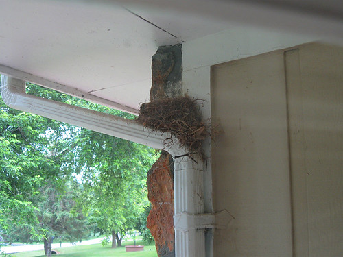 Mama's Nest