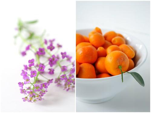 Kumquats and flowers
