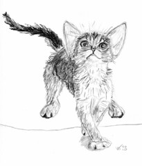 Cute kitten, drawn on May 5, 2010