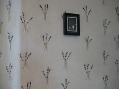 my lavender wallpaper