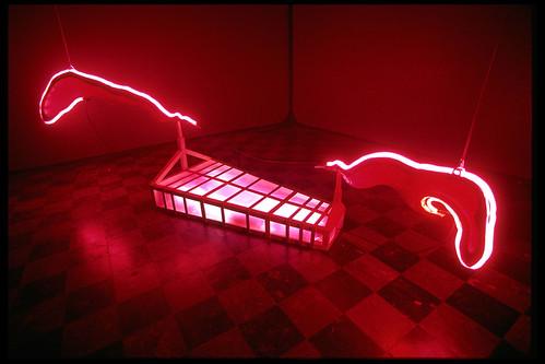 Neon Wings by Carolyn Speranza