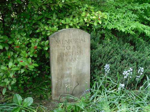 Winterbourne: Memory