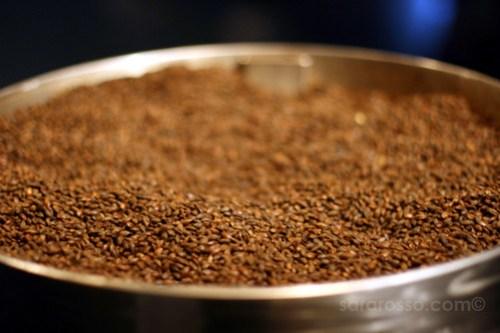 Roasted Barley, Guinness Storehouse, Dublin, Ireland