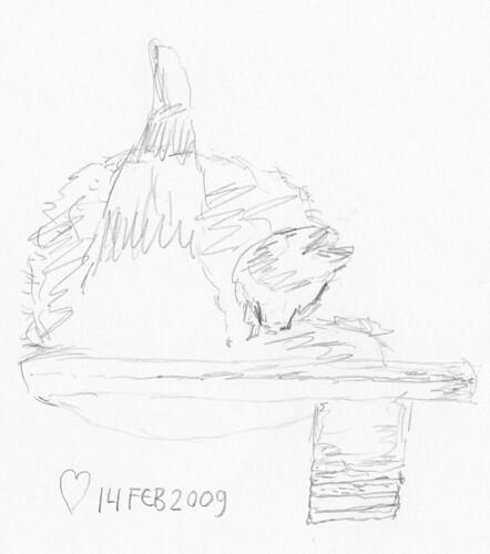 Cat sketches 005