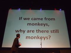 May Ball: Monkeys?