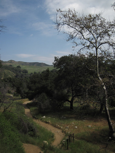 Placerita Canyon - Waterfall - 06