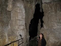 Carlsbad Caverns National Park-57