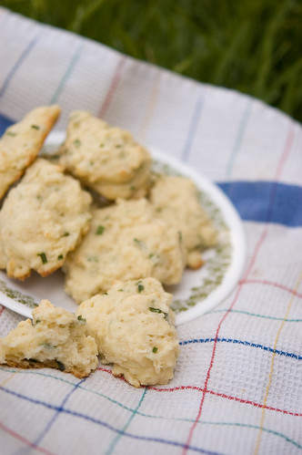 garlic chive-parmesan biscuits (by bookgrl)